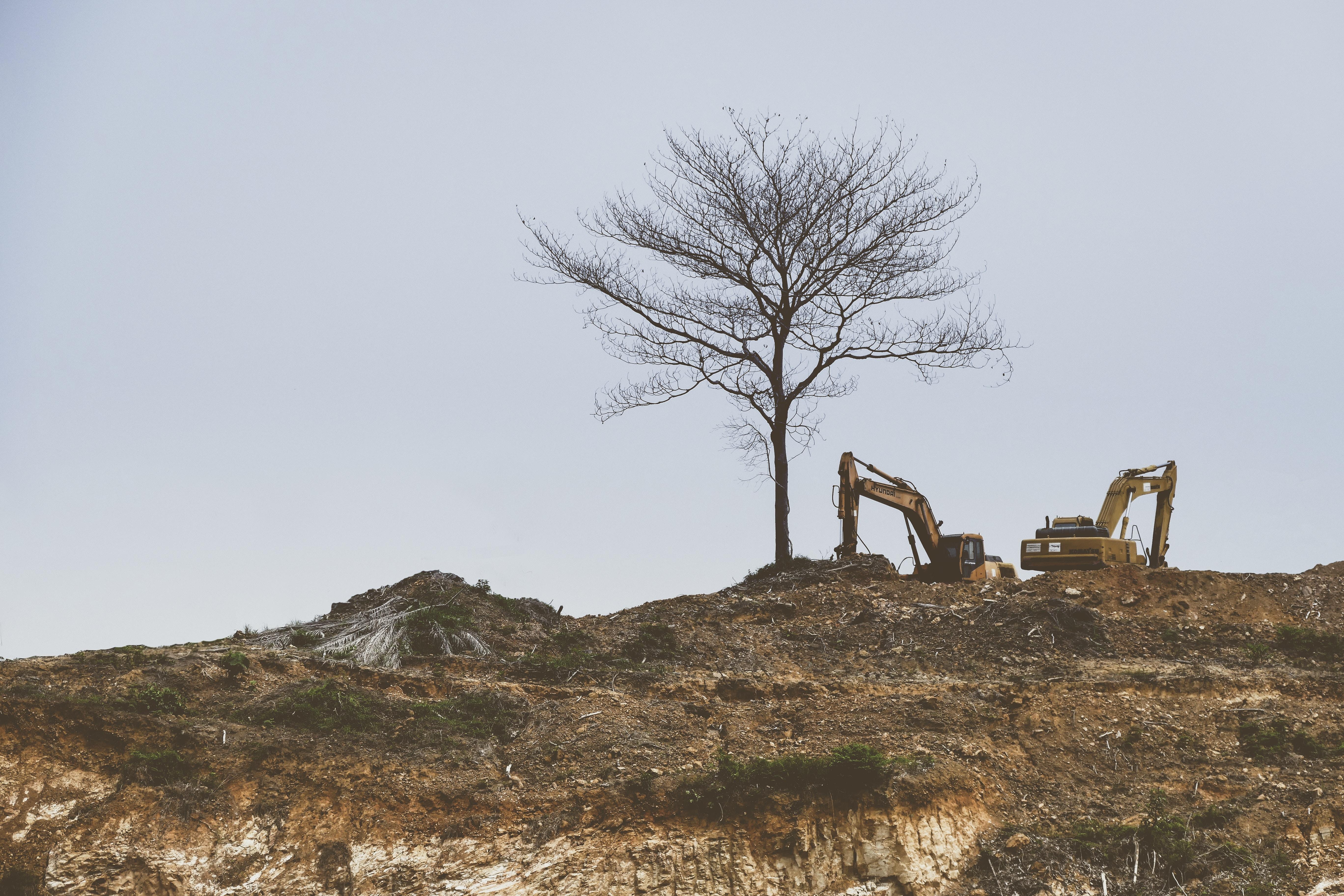 Capitalisme contre paysage : Le désastre sicilien