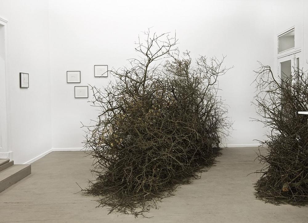 http://www.metamodernism.com/wp-content/uploads/2015/01/paula_doepfner_promessus1.jpg