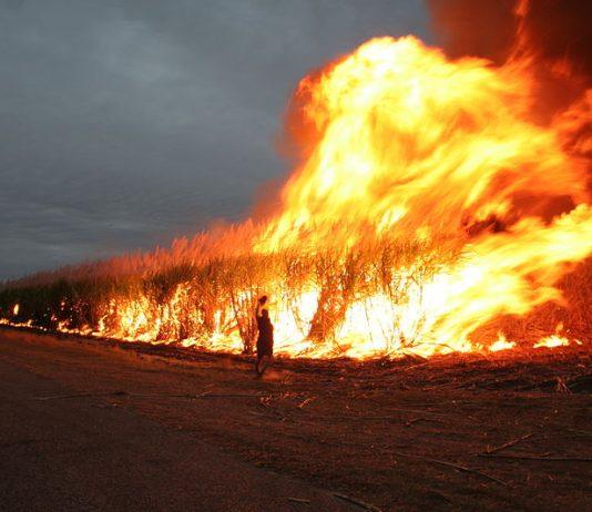 https://commons.wikimedia.org/wiki/File:Cane_fire_in_Australia.jpg