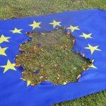 https://commons.wikimedia.org/wiki/File:Burning_EU_flag_20180930.jpg