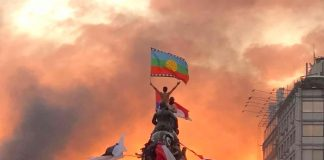 http://www.diarioeldia.cl/region/actriz-ovallina-captura-marcha-mas-grande-chile-en-emblematica-fotografia
